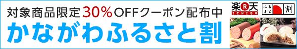 kanagawa_600x